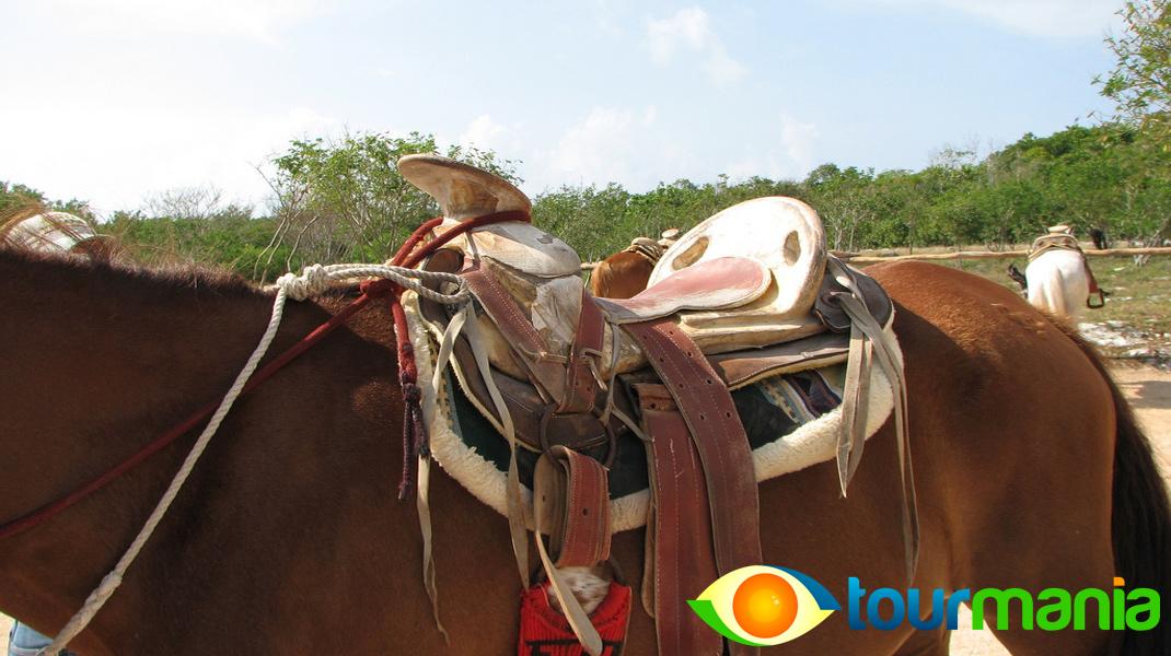 Horseback Riding in Kusadasi