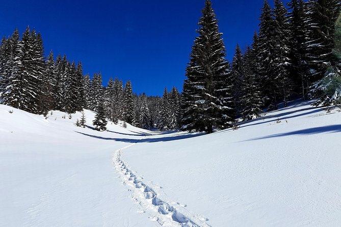 Pristina Snowshoeing fun in Kosovo