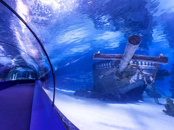 Multipass Aquarium