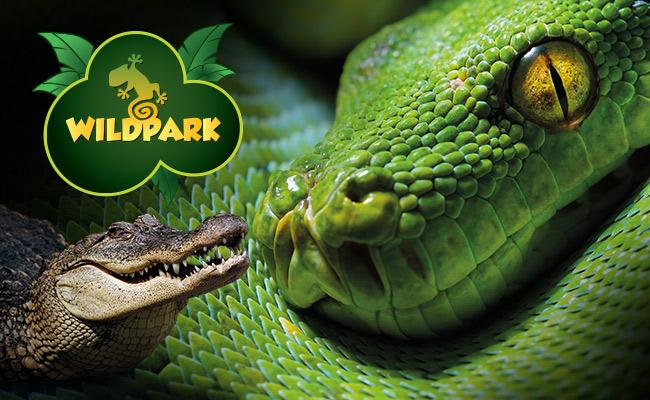 Akvaryum & WildPark