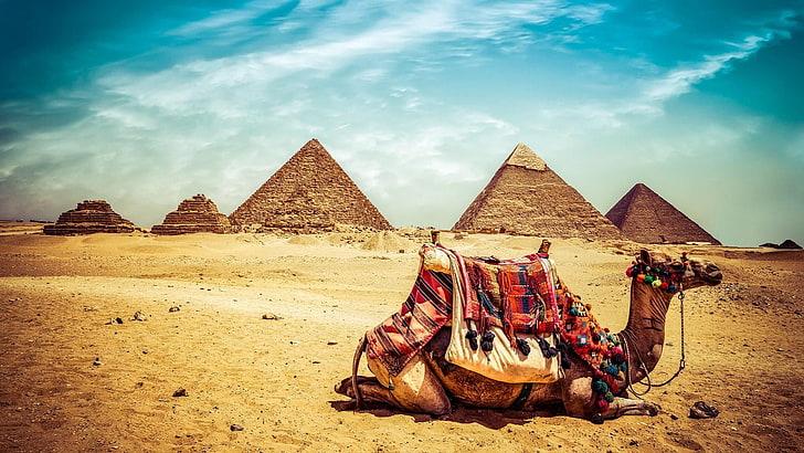 Nil Nehri Cruise&Kahire